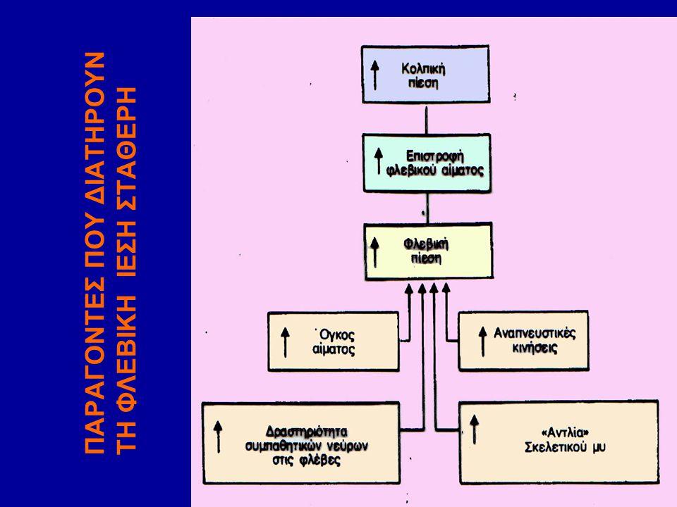 ΠΑΡΑΓΟΝΤΕΣ ΠΟΥ ΔΙΑΤΗΡΟΥΝ ΤΗ ΦΛΕΒΙΚΗ ΙΕΣΗ ΣΤΑΘΕΡΗ