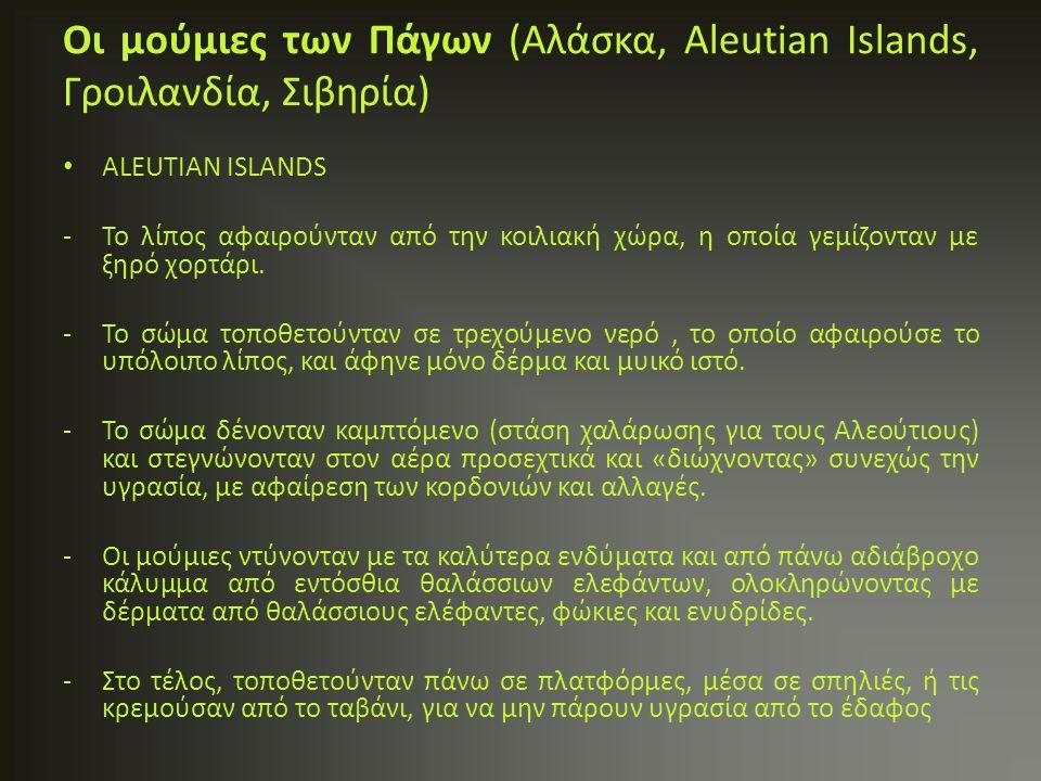 ALEUTIAN ISLANDS -Το λίπος αφαιρούνταν από την κοιλιακή χώρα, η οποία γεμίζονταν με ξηρό χορτάρι. -Το σώμα τοποθετούνταν σε τρεχούμενο νερό, το οποίο
