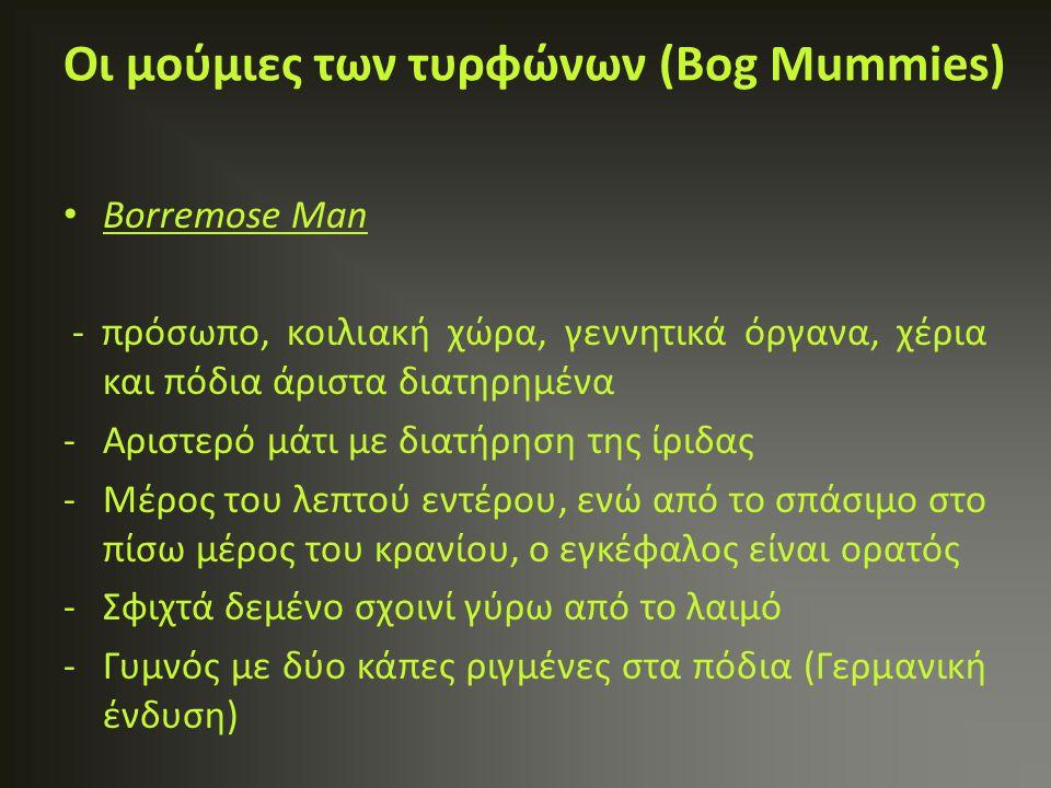 Borremose Man - πρόσωπο, κοιλιακή χώρα, γεννητικά όργανα, χέρια και πόδια άριστα διατηρημένα -Αριστερό μάτι με διατήρηση της ίριδας -Μέρος του λεπτού