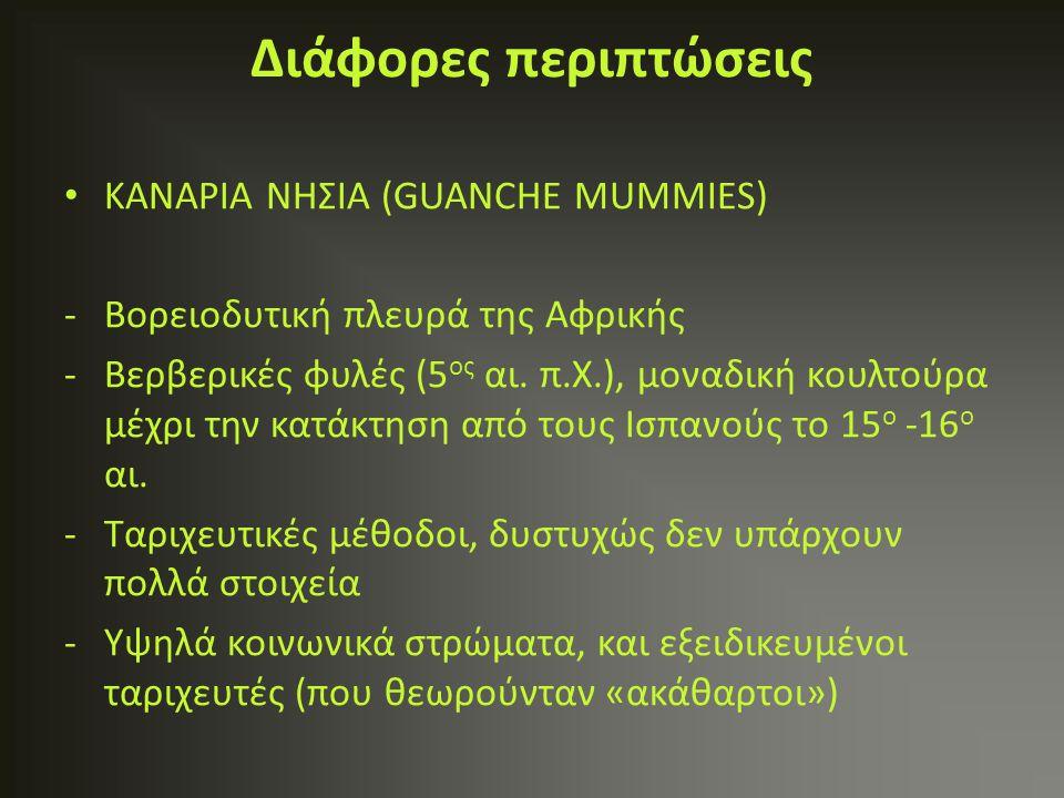 ΚΑΝAΡΙΑ ΝΗΣΙΑ (GUANCHE MUMMIES) -Βορειοδυτική πλευρά της Αφρικής -Βερβερικές φυλές (5 ος αι. π.Χ.), μοναδική κουλτούρα μέχρι την κατάκτηση από τους Ισ