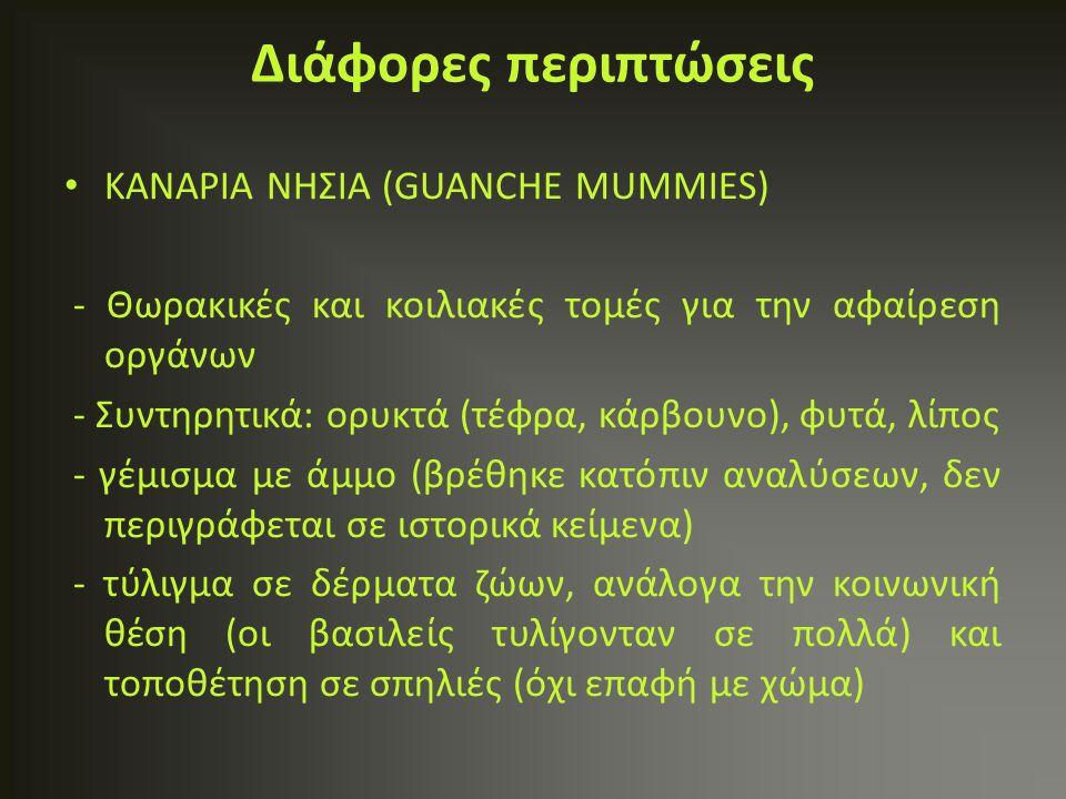 ΚΑΝΑΡΙΑ ΝΗΣΙΑ (GUANCHE MUMMIES) - Θωρακικές και κοιλιακές τομές για την αφαίρεση οργάνων - Συντηρητικά: ορυκτά (τέφρα, κάρβουνο), φυτά, λίπος - γέμισμ