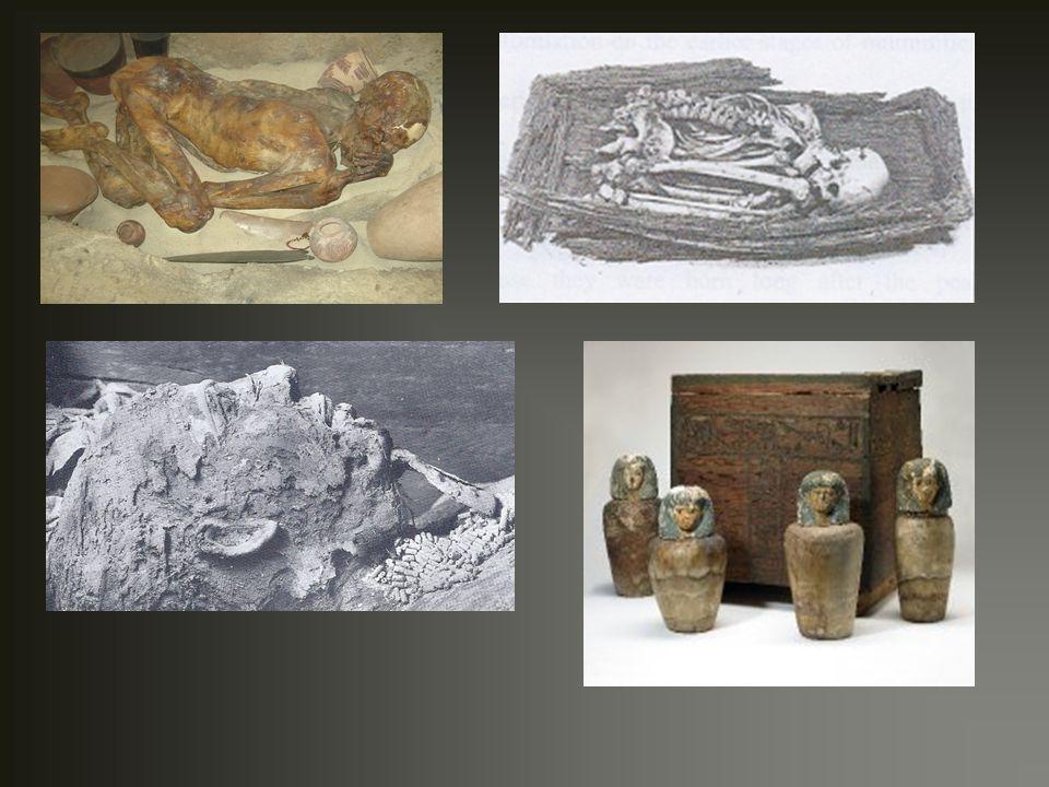 Grauballe Man - πεσμένος πάνω στο στήθος του με ελαφρά παραμορφωμένο κεφάλι λόγω τύρφης - μεταφέρθηκε σε μουσείο, αφού δημιοργήθηκε κρατήρας γύρω από το σημείο που βρέθηκε, και η μούμια μαζί με τα περιεχόμενα του τυρφώνα μετακινήθηκαν (αεροστεγής βιτρίνα) - ματιά κλειστά και επίπεδα και σχετικά μεγάλο στόμα - βαθύ και σοβαρό τραύμα στο λαιμό – ο θάνατος προκλήθηκε από μακρύ κόψιμο - διατήρηση δακτυλικών αποτυπωμάτων Οι μούμιες των τυρφώνων (Bog Mummies)