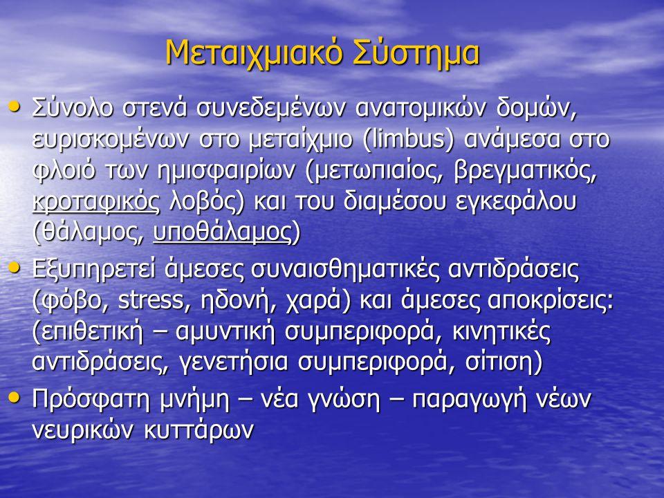 Μεταιχμιακό Σύστημα: Συνιστώσες Ανατομικές δομές Ι Πρωταρχικά κέντρα φαιάς ουσίας: Ιπποκάμπειος σχηματισμός, παραϊπποκάμπεια, υπερμεσολόβια έλικα, πυρήνες θαλάμου, μαστία υποθαλάμου, επικλινής, κλινοειδής (bed) πυρήνας Πρωταρχικά κέντρα φαιάς ουσίας: Ιπποκάμπειος σχηματισμός, παραϊπποκάμπεια, υπερμεσολόβια έλικα, πυρήνες θαλάμου, μαστία υποθαλάμου, επικλινής, κλινοειδής (bed) πυρήνας