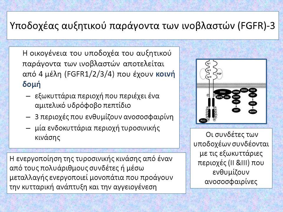 Υποδοχέας αυξητικού παράγοντα των ινοβλαστών (FGFR)-3 Η οικογένεια του υποδοχέα του αυξητικού παράγοντα των ινοβλαστών αποτελείται από 4 μέλη (FGFR1/2