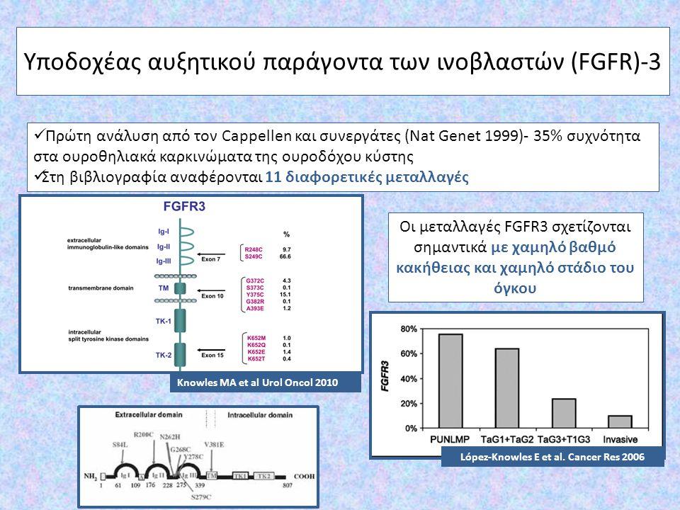 Υποδοχέας αυξητικού παράγοντα των ινοβλαστών (FGFR)-3 Πρώτη ανάλυση από τον Cappellen και συνεργάτες (Nat Genet 1999)- 35% συχνότητα στα ουροθηλιακά κ