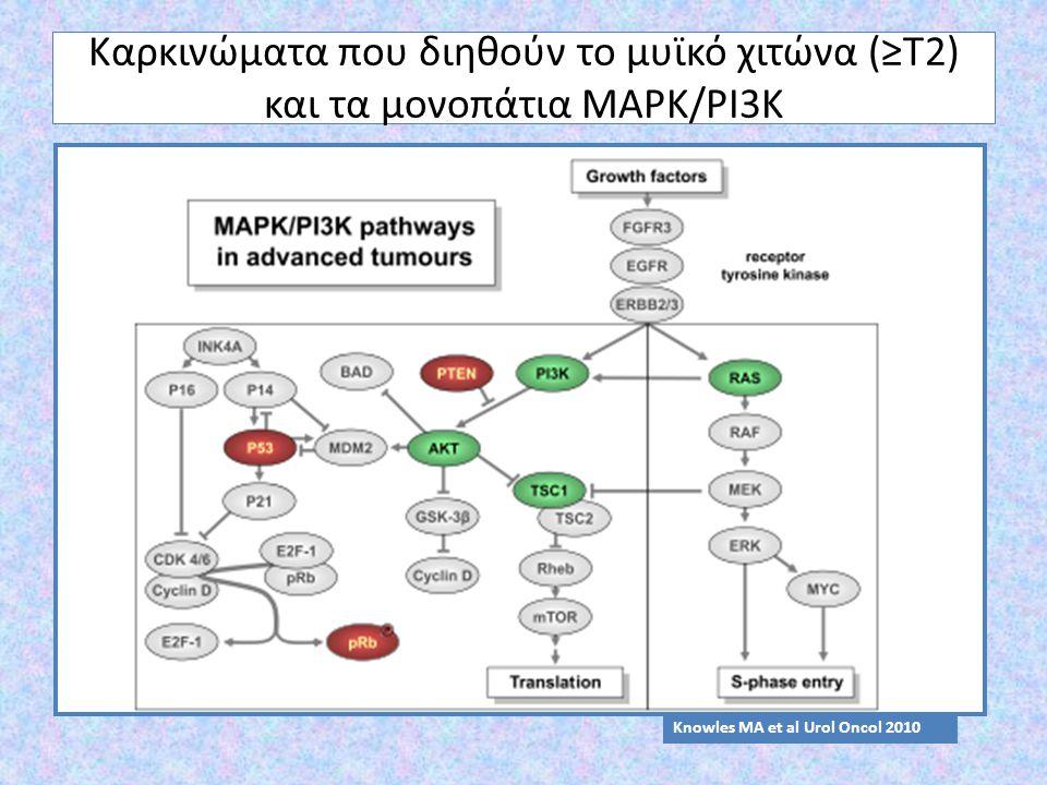 Καρκινώματα που διηθούν το μυϊκό χιτώνα (≥Τ2) και τα μονοπάτια MAPK/PI3K Knowles MA et al Urol Oncol 2010