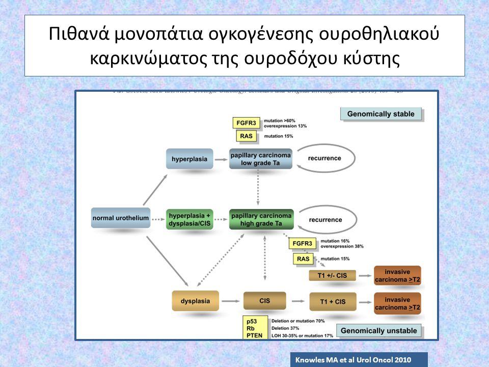 Πιθανά μονοπάτια ογκογένεσης ουροθηλιακού καρκινώματος της ουροδόχου κύστης Knowles MA et al Urol Oncol 2010