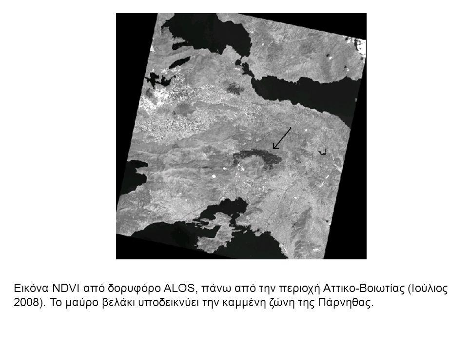 Εικόνα NDVI από δορυφόρο ALOS, πάνω από την περιοχή Αττικο-Βοιωτίας (Ιούλιος 2008). Το μαύρο βελάκι υποδεικνύει την καμμένη ζώνη της Πάρνηθας.