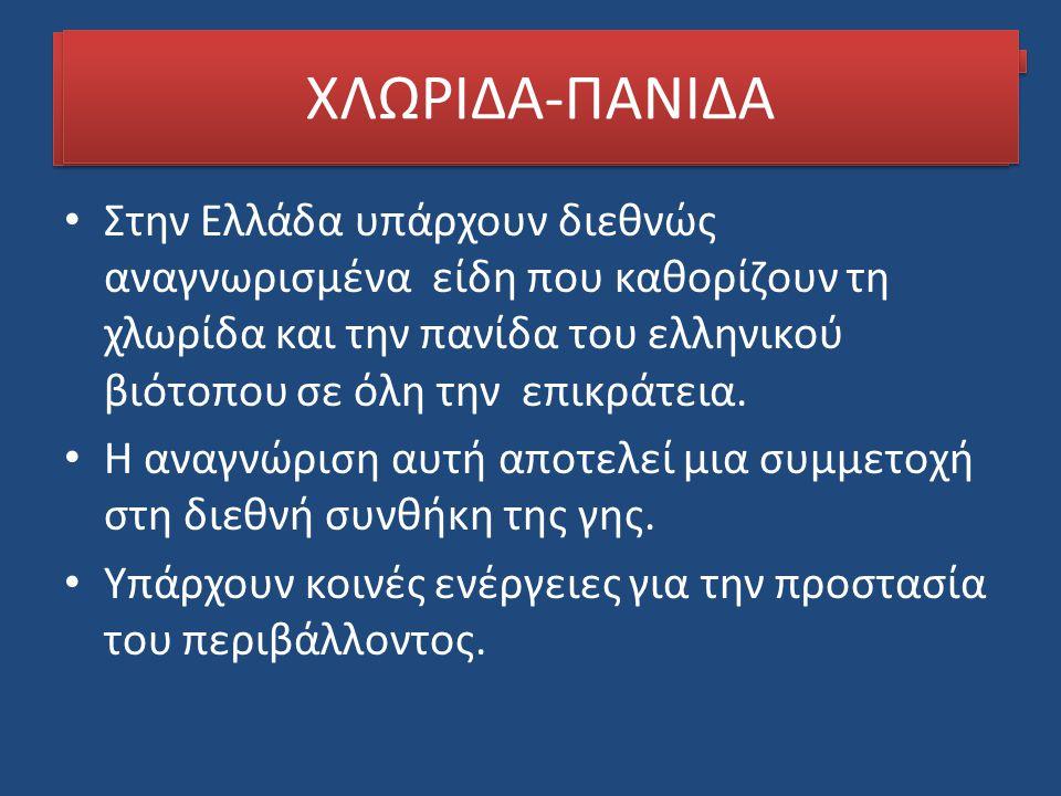 ΧΛΩΡΙΔΑ-ΠΑΝΙΔΑ Στην Ελλάδα υπάρχουν διεθνώς αναγνωρισμένα είδη που καθορίζουν τη χλωρίδα και την πανίδα του ελληνικού βιότοπου σε όλη την επικράτεια.