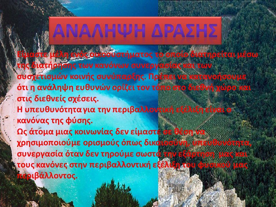 Το ρέμα της Πικροδάφνης είναι ένα από τα ελάχιστα εναπομείναντα ρέματα της Αττικής, το οποίο εξακολουθεί να διατηρεί ορισμένα σημαντικά υδρομορφολογικά και βιολογικά χαρακτηριστικά του.