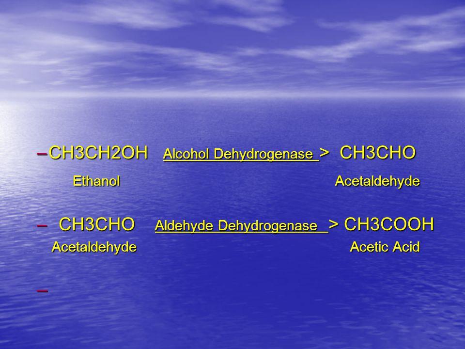 –CH3CH2OH Alcohol Dehydrogenase > CH3CHO Ethanol Acetaldehyde – CH3CHO Aldehyde Dehydrogenase > CH3COOH Acetaldehyde Acetic Acid Acetaldehyde Acetic Acid –