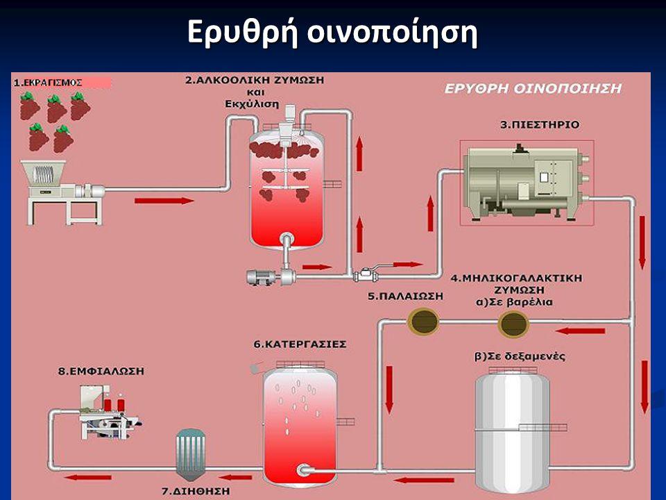 Αλκοολική Ζύμωση C 6 Η 12 O 6 Ζύμες, Ο 2 2CH 3 CΗ 2 OH + 2CO 2 + Q C 6 Η 12 O 6 Ζύμες, Ο 2 2CH 3 CΗ 2 OH + 2CO 2 + Q