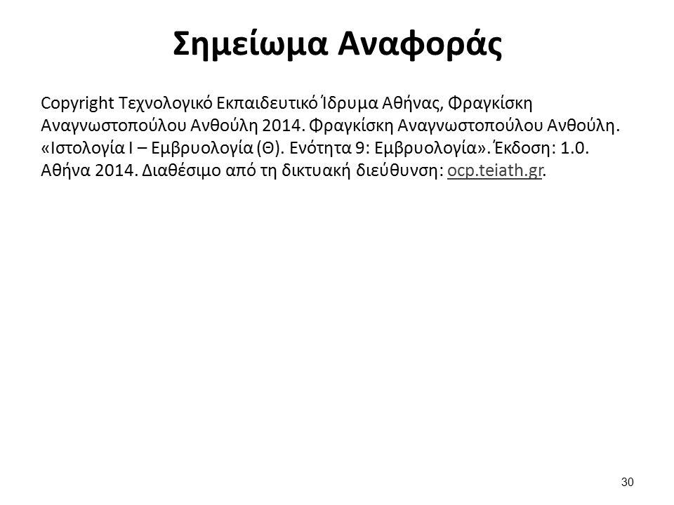 Σημείωμα Αναφοράς Copyright Τεχνολογικό Εκπαιδευτικό Ίδρυμα Αθήνας, Φραγκίσκη Αναγνωστοπούλου Ανθούλη 2014. Φραγκίσκη Αναγνωστοπούλου Ανθούλη. «Ιστολο