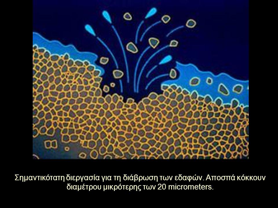 Σημαντικότατη διεργασία για τη διάβρωση των εδαφών. Αποσπά κόκκουν διαμέτρου μικρότερης των 20 micrometers.