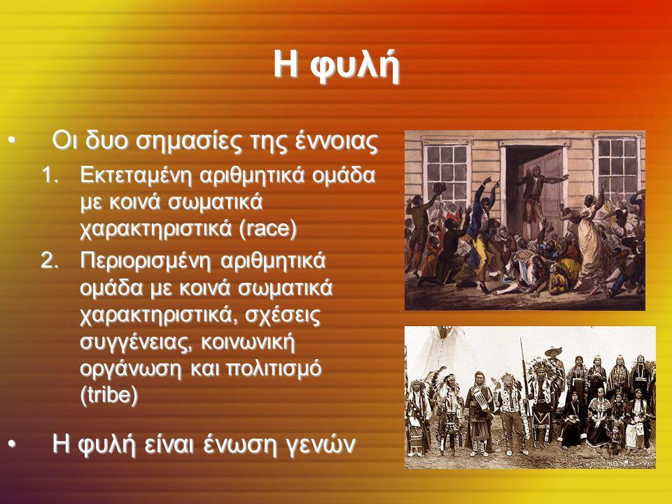 Η φυλή Οι δυο σημασίες της έννοιαςΟι δυο σημασίες της έννοιας 1.Εκτεταμένη αριθμητικά ομάδα με κοινά σωματικά χαρακτηριστικά (race) 2.Περιορισμένη αριθμητικά ομάδα με κοινά σωματικά χαρακτηριστικά, σχέσεις συγγένειας, κοινωνική οργάνωση και πολιτισμό (tribe) Η φυλή είναι ένωση γενώνΗ φυλή είναι ένωση γενών