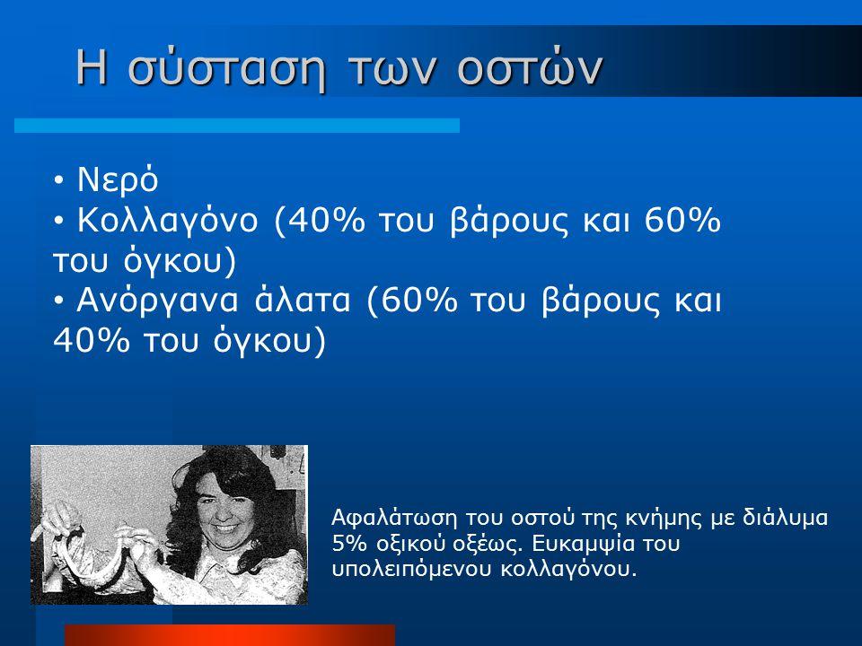 Νερό Κολλαγόνο (40% του βάρους και 60% του όγκου) Ανόργανα άλατα (60% του βάρους και 40% του όγκου) Αφαλάτωση του οστού της κνήμης με διάλυμα 5% οξικο