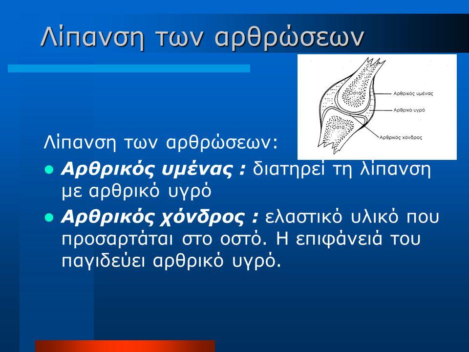 Λίπανση των αρθρώσεων Λίπανση των αρθρώσεων: Αρθρικός υμένας : διατηρεί τη λίπανση με αρθρικό υγρό Αρθρικός χόνδρος : ελαστικό υλικό που προσαρτάται σ