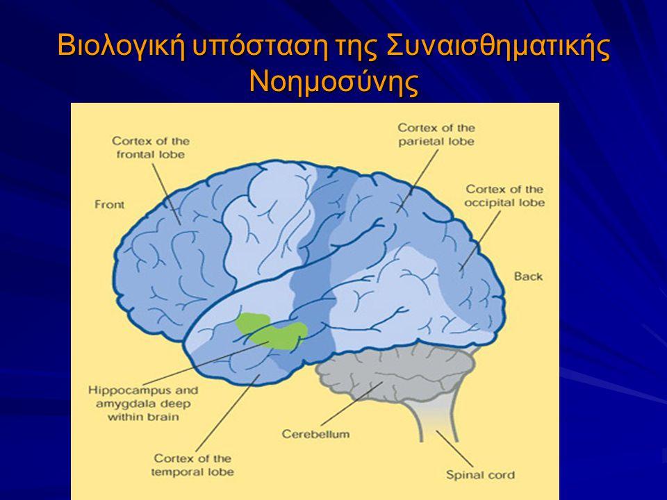 Βιολογική υπόσταση της Συναισθηματικής Νοημοσύνης