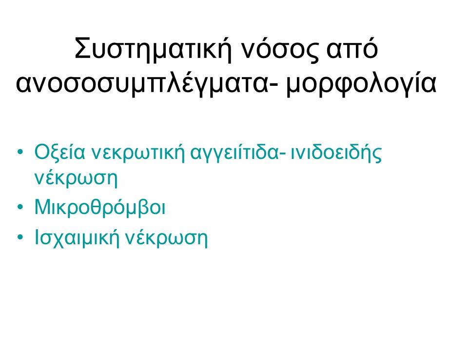 Συστηματική νόσος από ανοσοσυμπλέγματα- μορφολογία Οξεία νεκρωτική αγγειίτιδα- ινιδοειδής νέκρωση Μικροθρόμβοι Ισχαιμική νέκρωση