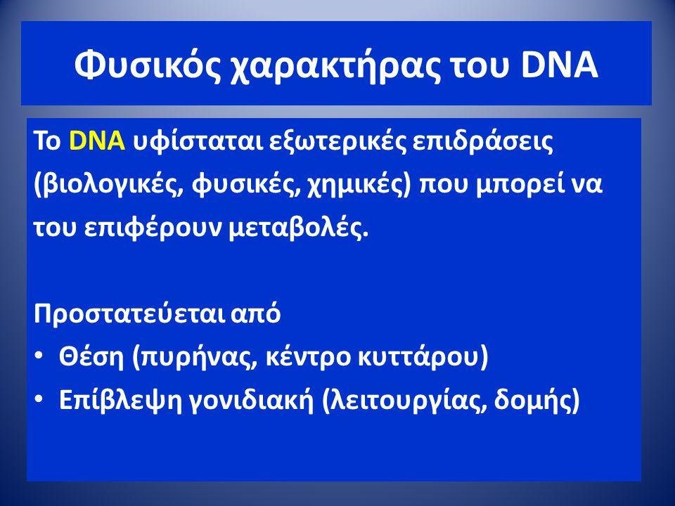 Φυσικός χαρακτήρας του DNA To DNA υφίσταται εξωτερικές επιδράσεις (βιολογικές, φυσικές, χημικές) που μπορεί να του επιφέρουν μεταβολές. Προστατεύεται