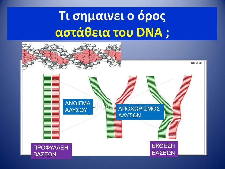 Τι σημαινει ο όρος αστάθεια του DNA ; ααααααααααααααααααααααααα ΑΝΟΙΓΜΑ ΑΛΥΣΟΥ ΑΠΟΧΩΡΙΣΜΟΣ ΑΛΥΣΩΝ ΠΡΟΦΥΛΑΞΗ ΒΑΣΕΩΝ ΕΚΘΕΣΗ ΒΑΣΕΩΝ