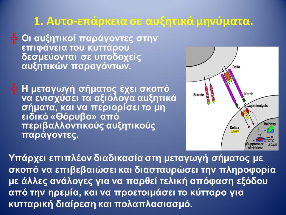 1. Αυτο-επάρκεια σε αυξητικά μηνύματα. ╬Οι αυξητικοί παράγοντες στην επιφάνεια του κυττάρου δεσμεύονται σε υποδοχείς αυξητικών παραγόντων. ╬Η μεταγωγή