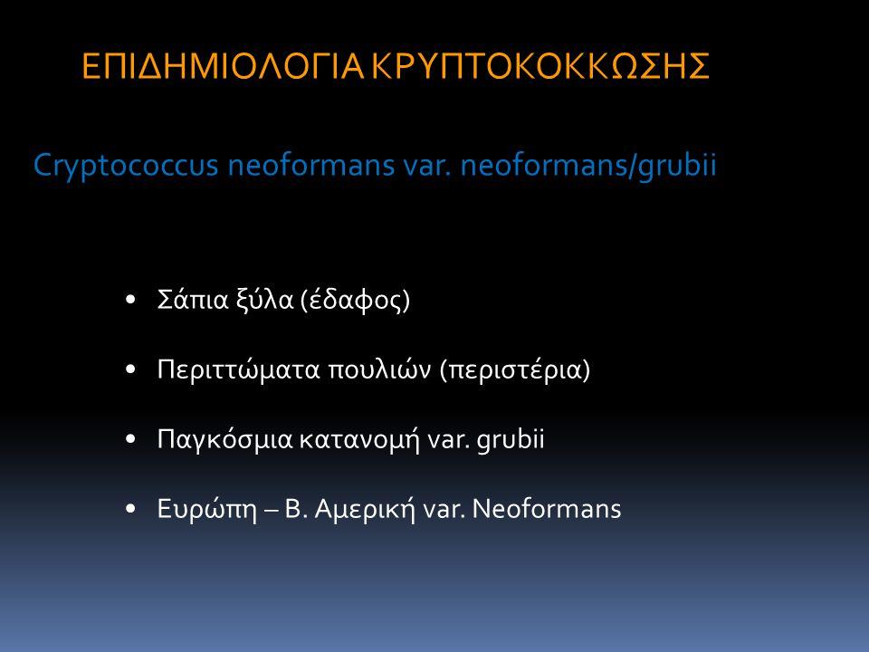 Σάπια ξύλα (έδαφος) Περιττώματα πουλιών (περιστέρια) Παγκόσμια κατανομή var. grubii Ευρώπη – Β. Αμερική var. Neoformans ΕΠΙΔΗΜΙΟΛΟΓΙΑ ΚΡΥΠΤΟΚΟΚΚΩΣΗΣ C