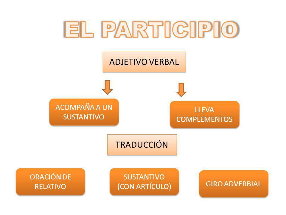 ADJETIVO VERBAL ACOMPAÑA A UN SUSTANTIVO LLEVA COMPLEMENTOS TRADUCCIÓN ORACIÓN DE RELATIVO SUSTANTIVO (CON ARTÍCULO) SUSTANTIVO (CON ARTÍCULO) GIRO ADVERBIAL