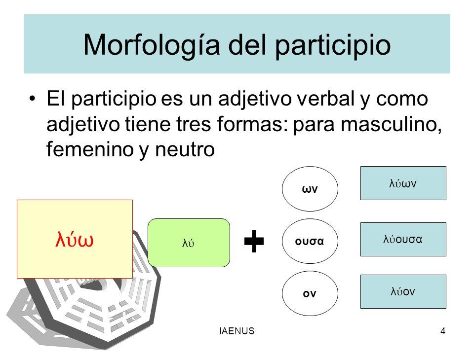 IAENUS4 Morfología del participio El participio es un adjetivo verbal y como adjetivo tiene tres formas: para masculino, femenino y neutro λ ω λ ων ου