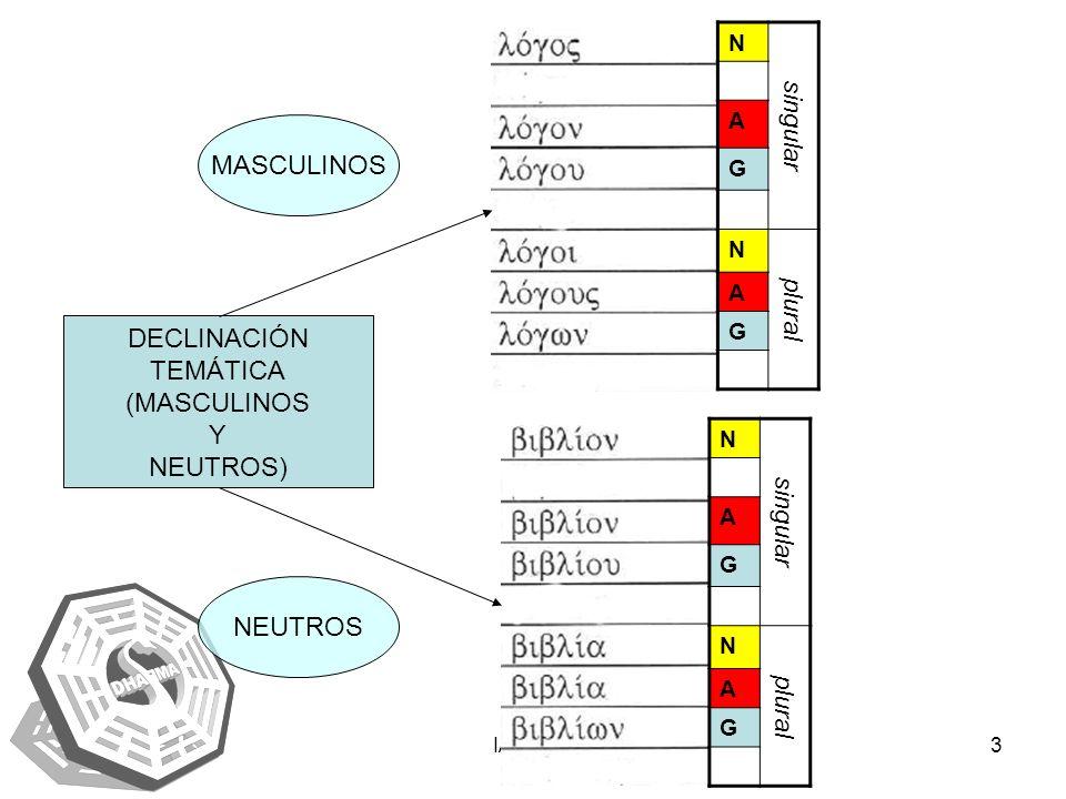 IAENUS3 DECLINACIÓN TEMÁTICA (MASCULINOS Y NEUTROS) MASCULINOS NEUTROS N singular A G N plural A G N singular A G N plural A G