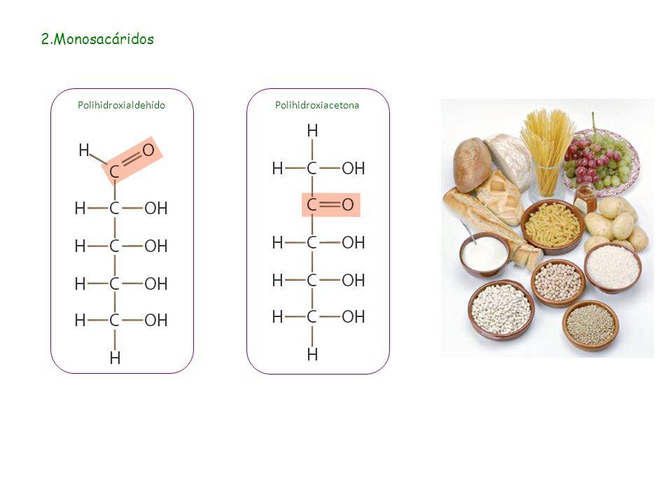 2.Monosacáridos PolihidroxiacetonaPolihidroxialdehído