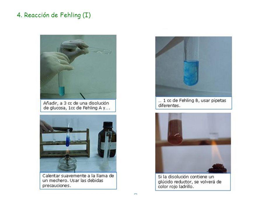 4. Reacción de Fehling (I)