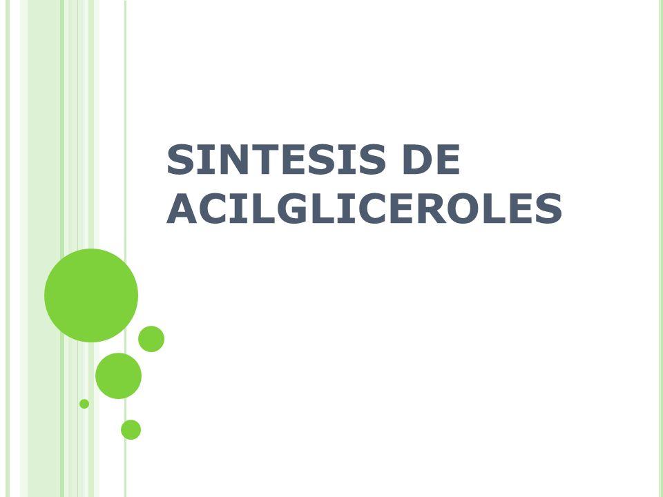 SINTESIS DE ACILGLICEROLES