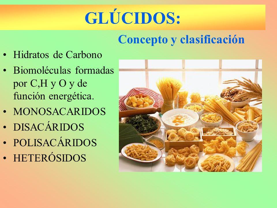 GLÚCIDOS: Hidratos de Carbono Biomoléculas formadas por C,H y O y de función energética. MONOSACARIDOS DISACÁRIDOS POLISACÁRIDOS HETERÓSIDOS Concepto