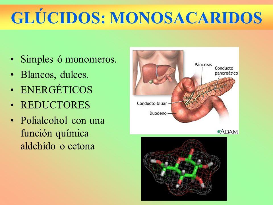 GLÚCIDOS: MONOSACARIDOS Simples ó monomeros. Blancos, dulces. ENERGÉTICOS REDUCTORES Polialcohol con una función química aldehído o cetona