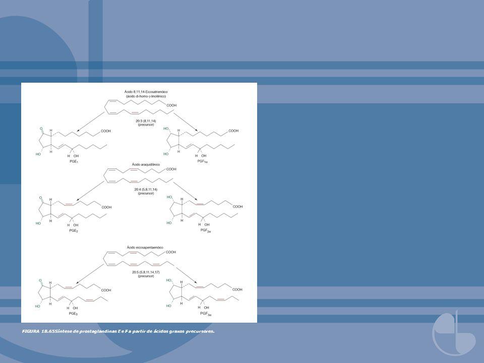 FIGURA 18.65Síntese de prostaglandinas E e F a partir de ácidos graxos precursores.