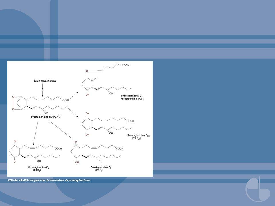 FIGURA 18.68Principais vias de biossíntese de prostaglandinas