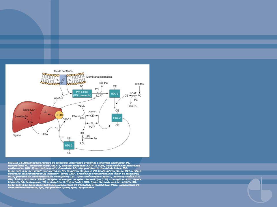 FIGURA 18.38Transporte reverso de colesterol mostrando proteínas e enzimas envolvidas. PL, fosfolipídeo; FC, colesterol livre; ABCA-1, cassete de liga