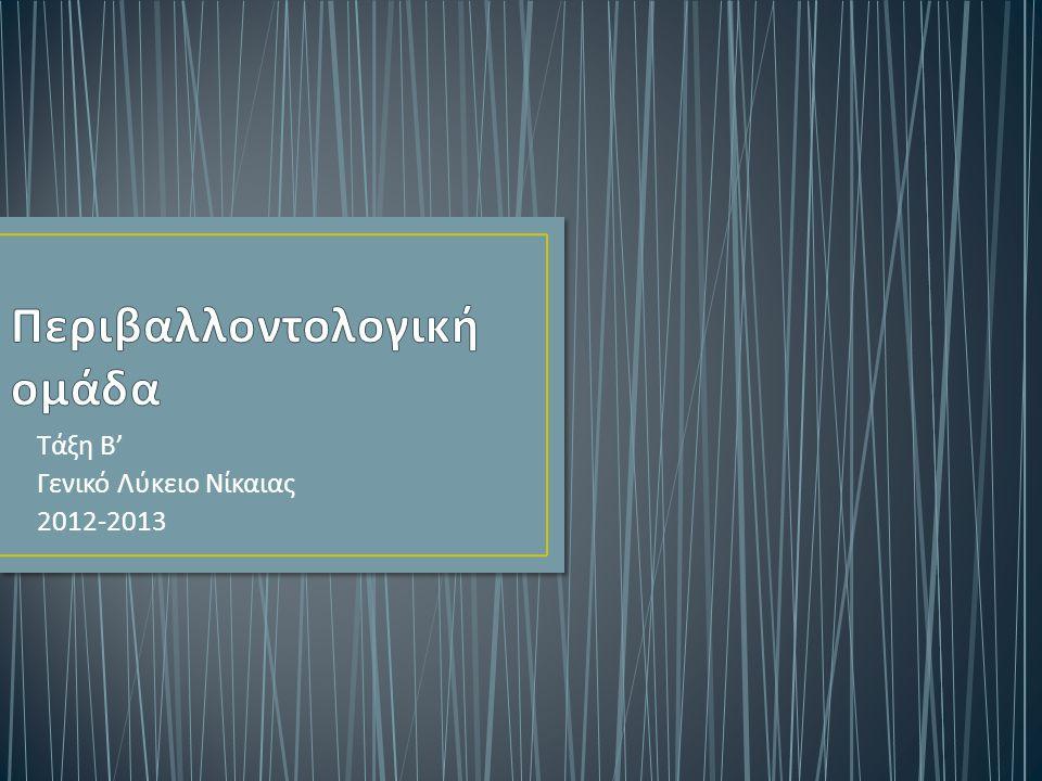 Τάξη Β ' Γενικό Λύκειο Νίκαιας 2012-2013