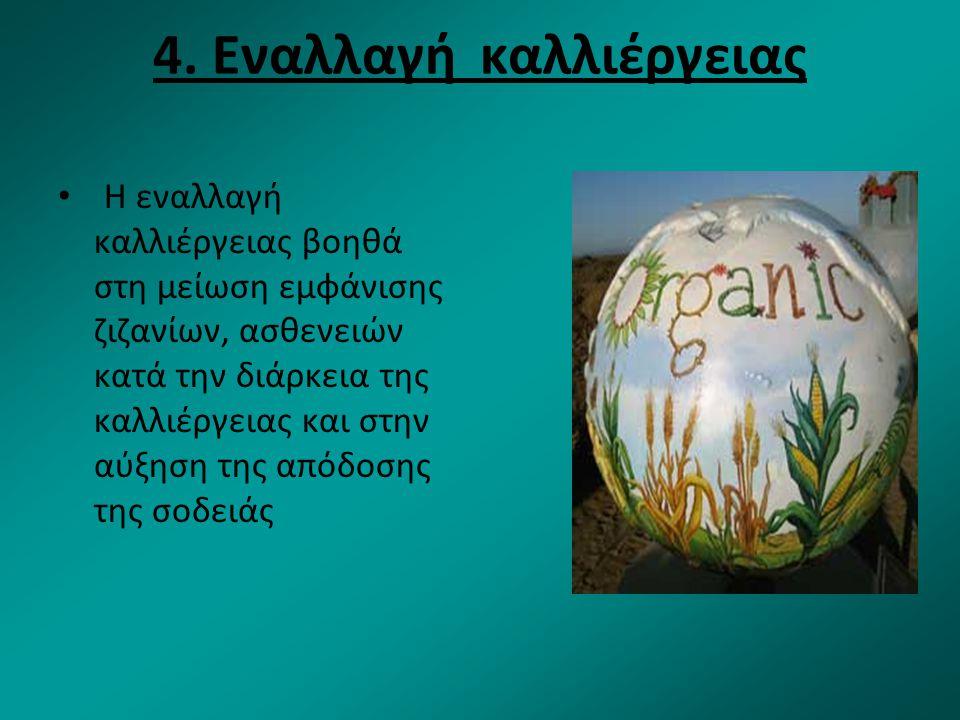 4. Εναλλαγή καλλιέργειας Η εναλλαγή καλλιέργειας βοηθά στη μείωση εμφάνισης ζιζανίων, ασθενειών κατά την διάρκεια της καλλιέργειας και στην αύξηση της