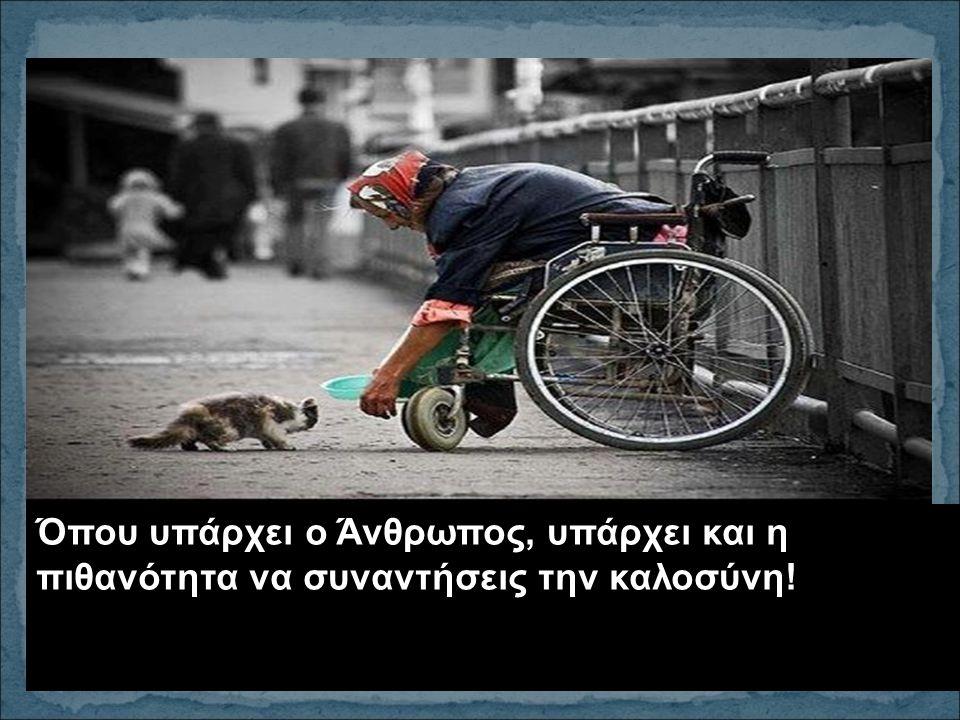 Όπου υπάρχει ο Άνθρωπος, υπάρχει και η πιθανότητα να συναντήσεις την καλοσύνη!