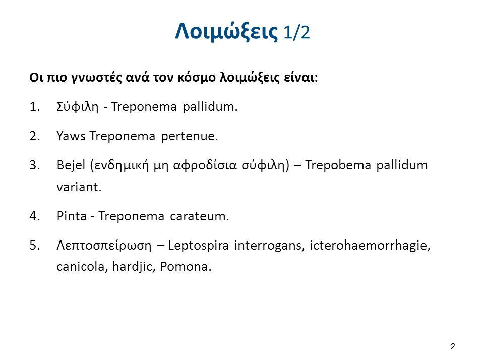 Λοιμώξεις 1/2 Οι πιο γνωστές ανά τον κόσμο λοιμώξεις είναι: 1.Σύφιλη - Treponema pallidum. 2.Yaws Treponema pertenue. 3.Bejel (ενδημική μη αφροδίσια σ