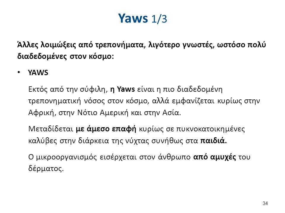 Yaws 1/3 Άλλες λοιμώξεις από τρεπονήματα, λιγότερο γνωστές, ωστόσο πολύ διαδεδομένες στον κόσμο: YAWS Εκτός από την σύφιλη, η Yaws είναι η πιο διαδεδο