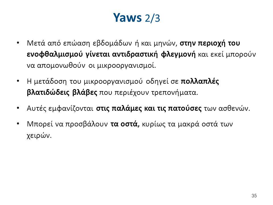 Yaws 2/3 Μετά από επώαση εβδομάδων ή και μηνών, στην περιοχή του ενοφθαλμισμού γίνεται αντιδραστική φλεγμονή και εκεί μπορούν να απομονωθούν οι μικροο
