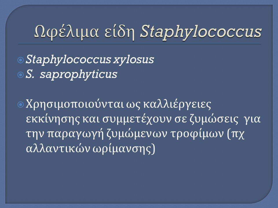  Staphylococcus xylosus  S. saprophyticus  Χρησιμοποιούνται ως καλλιέργειες εκκίνησης και συμμετέχουν σε ζυμώσεις για την παραγωγή ζυμώμενων τροφίμ