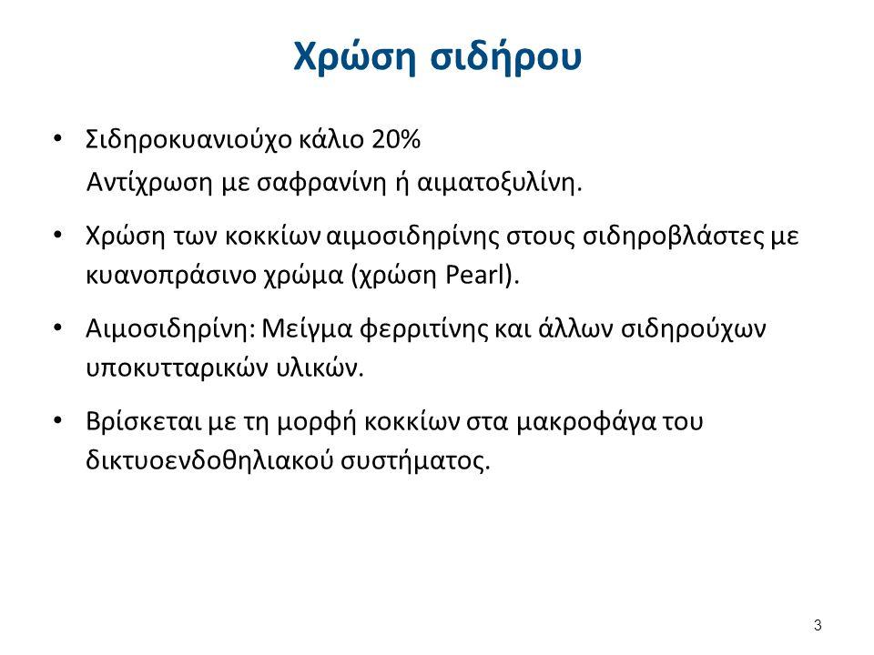 Σιδηροβλάστες Ερυθροβλάστες με κοκκία αιμοσιδηρίνης (μέχρι 5) (φυσιολογικά στο 50% του συνολικού αριθμού των ερυθροβλαστών).