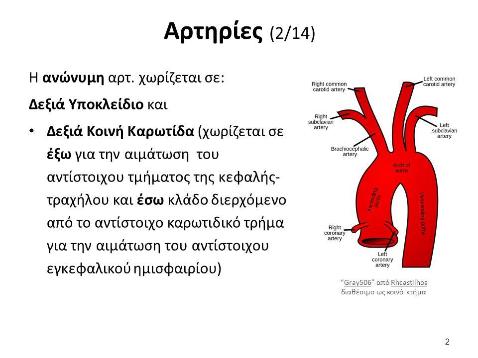 Αρτηρίες (2/14) Η ανώνυμη αρτ.