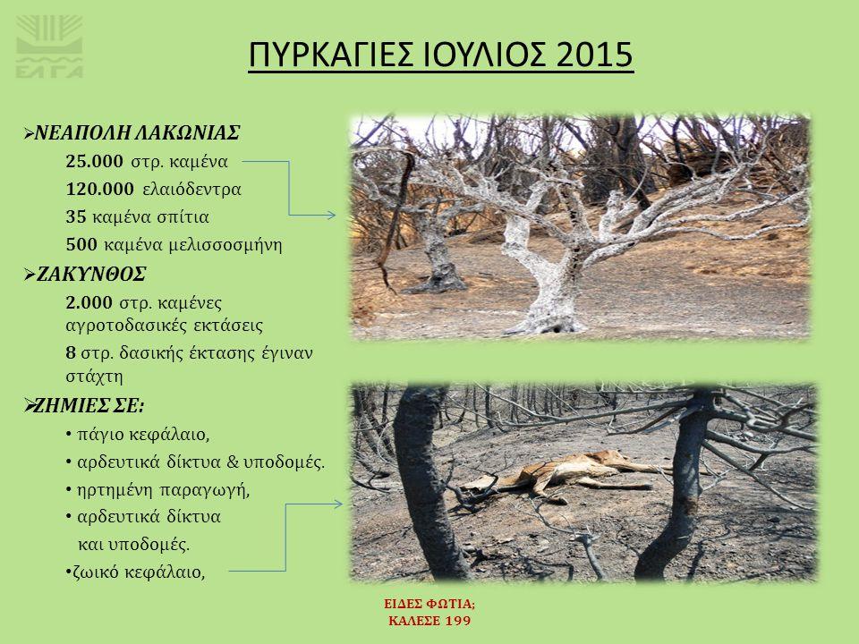 ΕΙΔΕΣ ΦΩΤΙΑ; ΚΑΛΕΣΕ 199  Το 95% των δασικών πυρκαγιών στην Ευρώπη προκαλούνται από τον άνθρωπο.