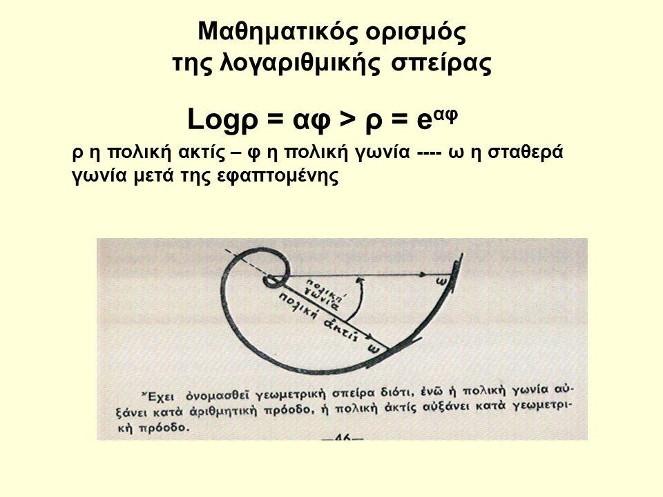 Μαθηματικός ορισμός της λογαριθμικής σπείρας Logρ = αφ > ρ = e αφ ρ η πολική ακτίς – φ η πολική γωνία ---- ω η σταθερά γωνία μετά της εφαπτομένης