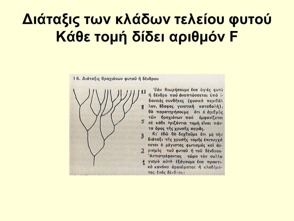 Διάταξις των κλάδων τελείου φυτού Κάθε τομή δίδει αριθμόν F
